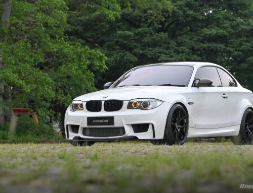 BMW 1M 2011 NO NONSENSE – Even No Bullshit At All
